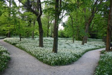 Rezultat iskanja slik za botanični vrtovi