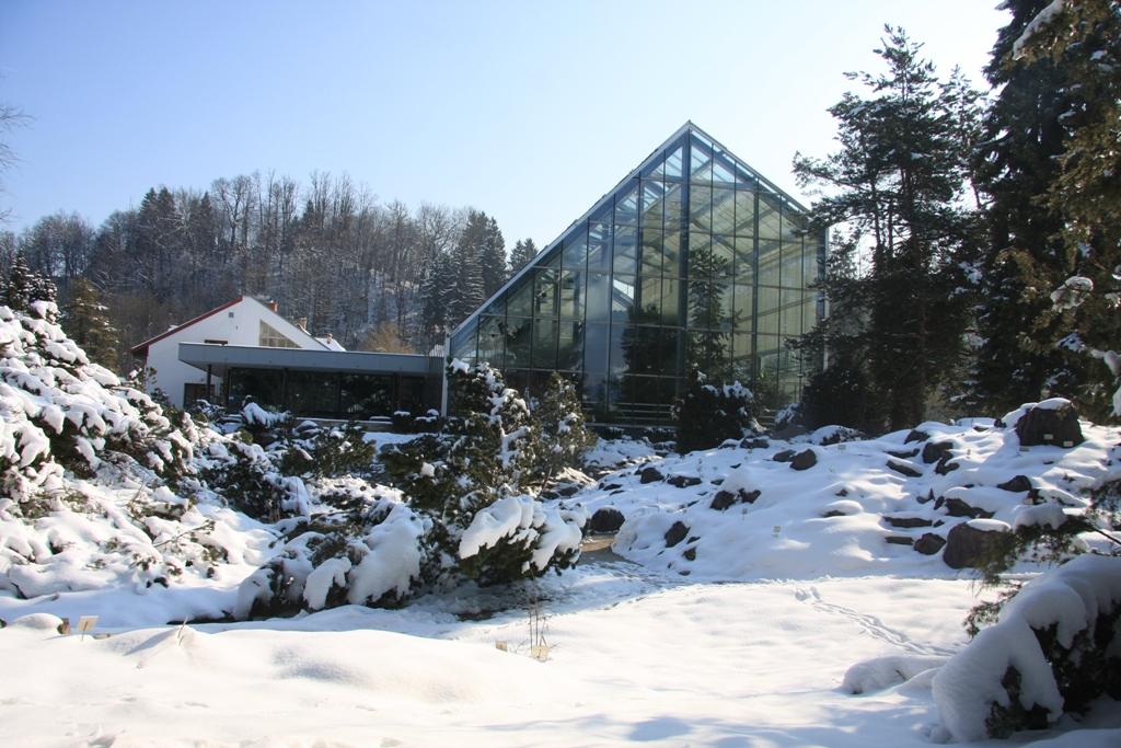 Botanični vrt Univerze v Ljubljani